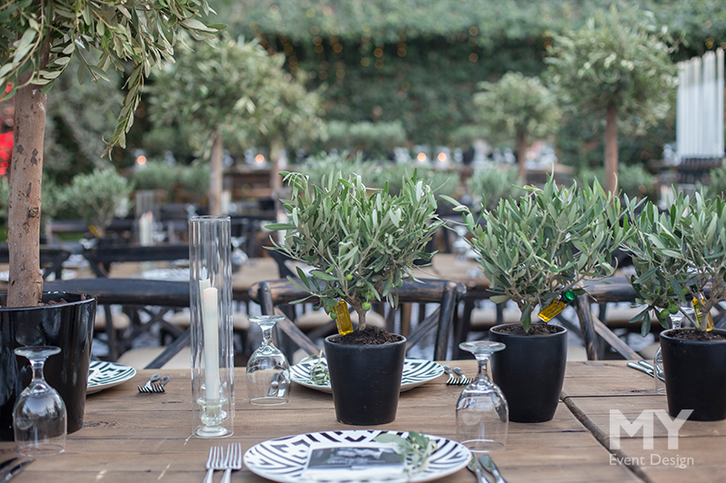 My Event Design | Olive Groves